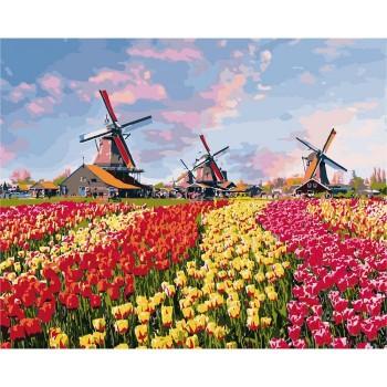 """Сельский пейзаж """"Красочные тюльпаны Голландии"""" 40*50см"""